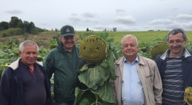 Відвідали фермерське господарство «Володимир»