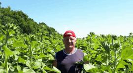 Фермерське господарство «САМАРА»